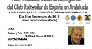 captura-de-pantalla-2016-10-19-a-las-10-16-28