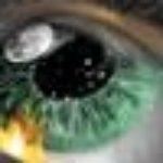 Foto del perfil de yhabosyf